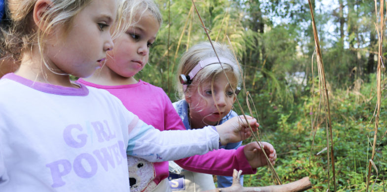 PreKindergarten | Apply to the Early Education Center at Ashley Hall